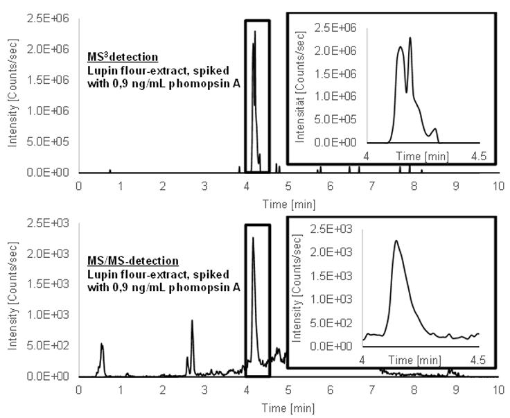 Figure 2: Chromatograms of a spiked lupin extract (0.9 µg/mL), detected with MS3 and MS/MS. Decreased matrix background around the target peak time with MS3.
